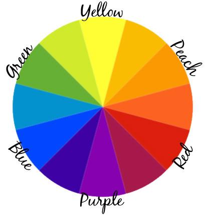 concealercolorwheel